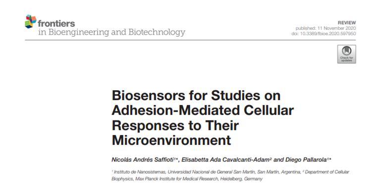Biosensors_Studies_Adhesion-Mediated_Cellular_Responses_Microenvironment.jpg
